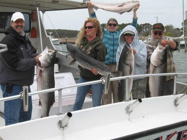 Chesapeake bay fishing report maryland fishing report for for Chesapeake bay bridge fishing report