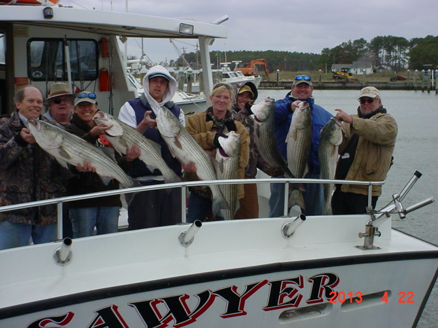 A Great Catch Of Chesapeake Bay Rockfish On Maryland's Eastern Shore!