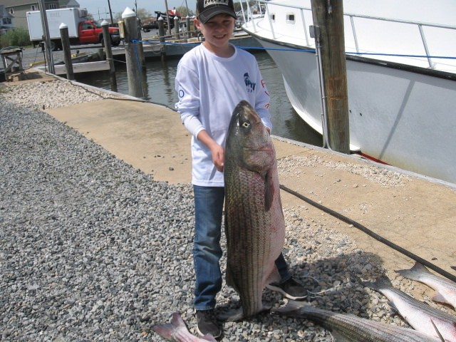 Young Man With HUGE Rockfish! Sawyer Chesapeake Bay Fishing Charters