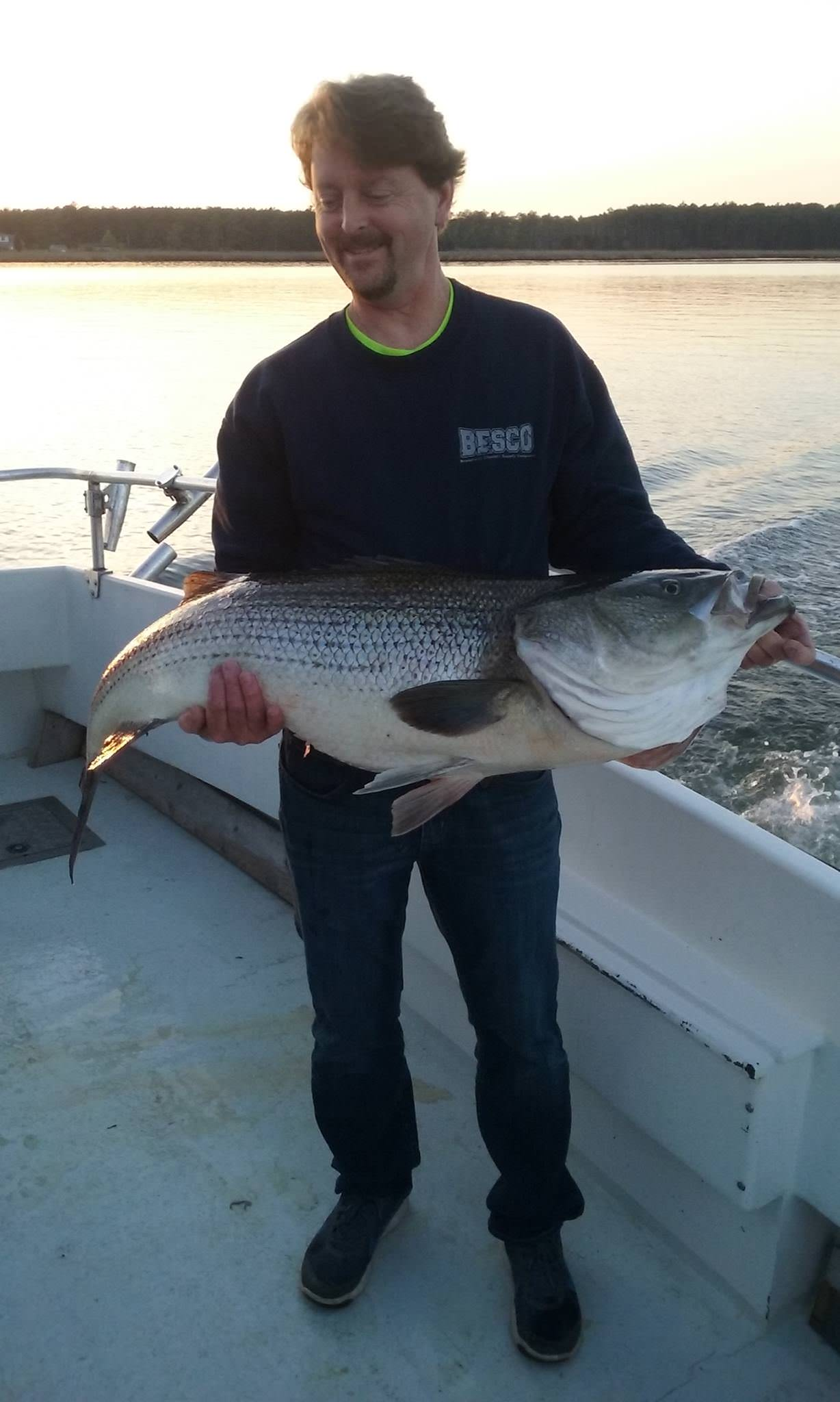 The Biggest Fish Caught On April 26! Maryland Rockfish!