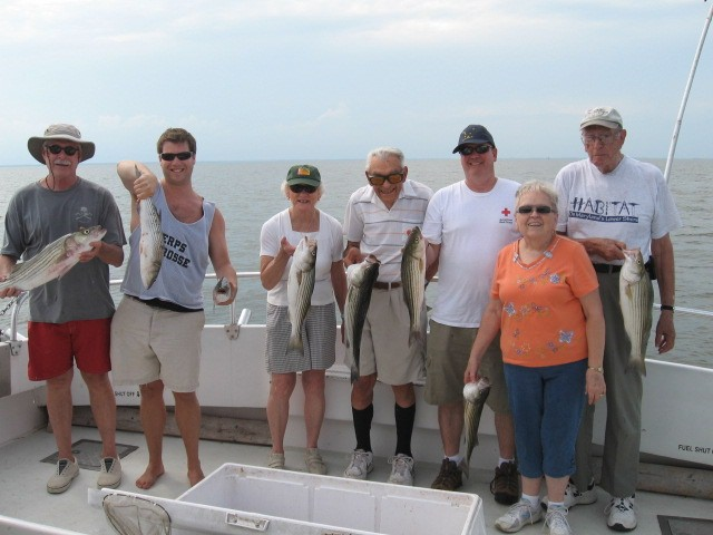 Live-Lining For Chesapeake Bay Rockfish!
