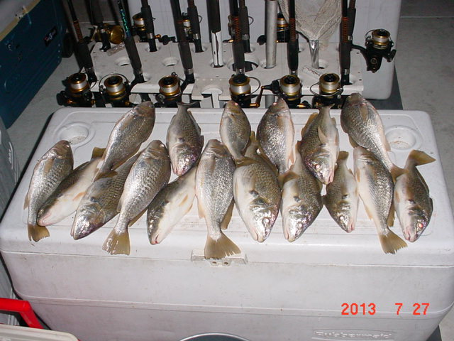 Chesapeake Bay Croaker Fishing From Maryland's Eastern Shore!