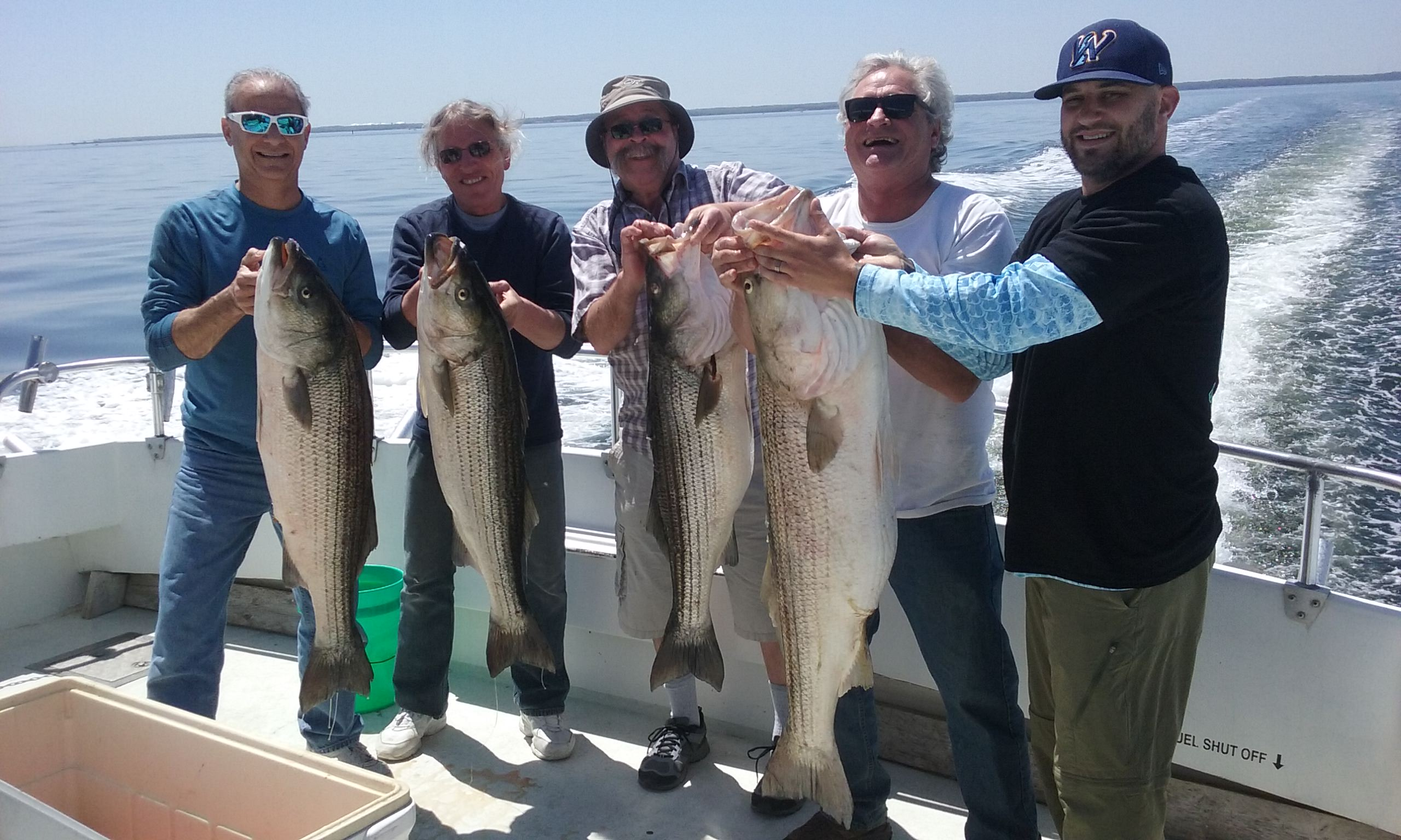 BIG Trophy Rockfish on the Chesapeake Bay