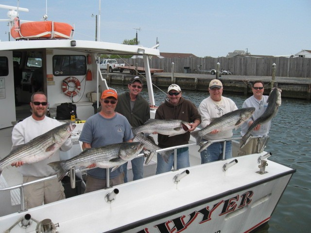 Chesapeake Bay Fishing Charters For Trophy Maryland Rockfish!