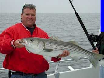 Sawyer Chesapeake Bay Fishing Charters From Maryland's Eastern Shore!