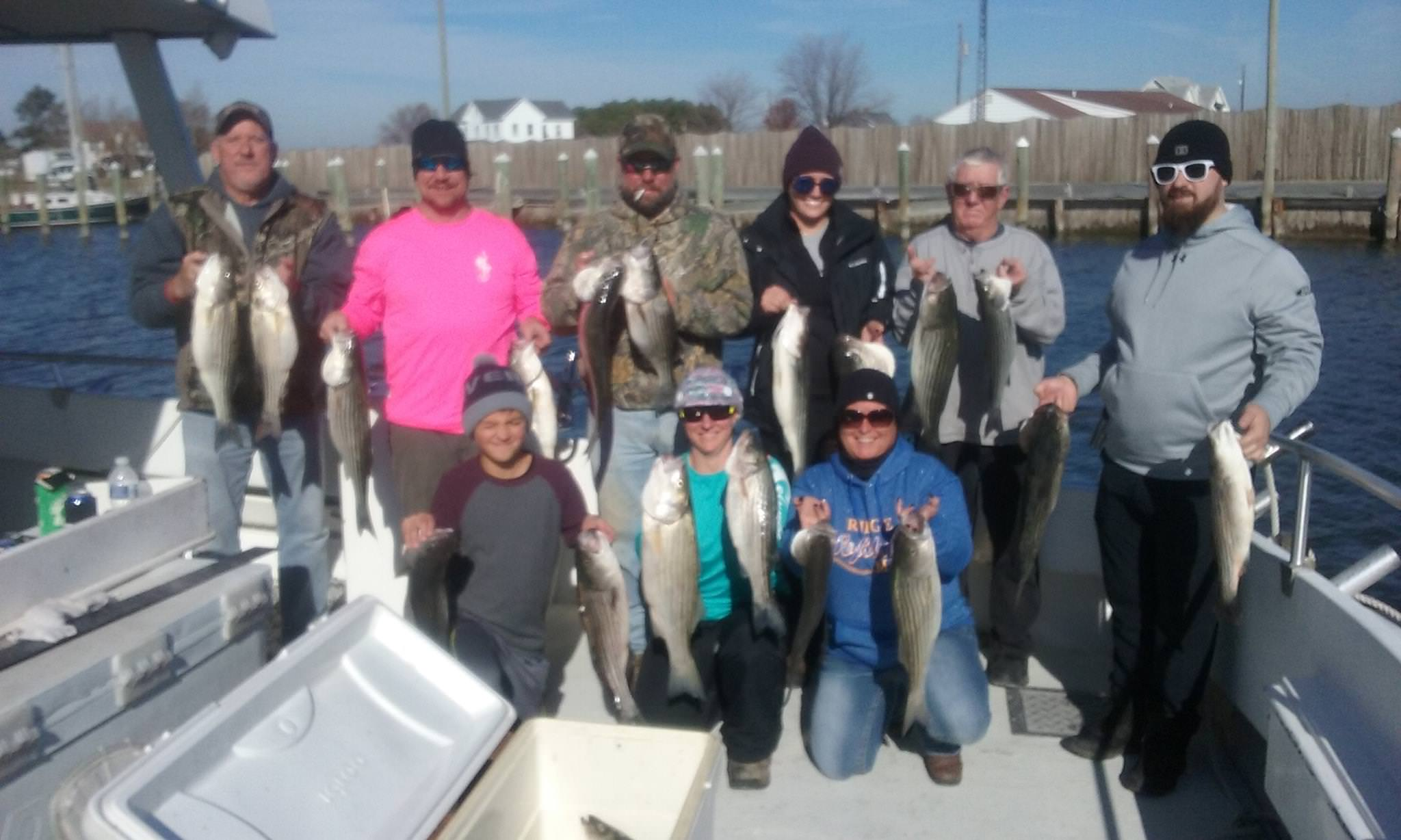 A Big Catch of Chesapeake Bay Rockfish from Maryland's Eastern Shore!