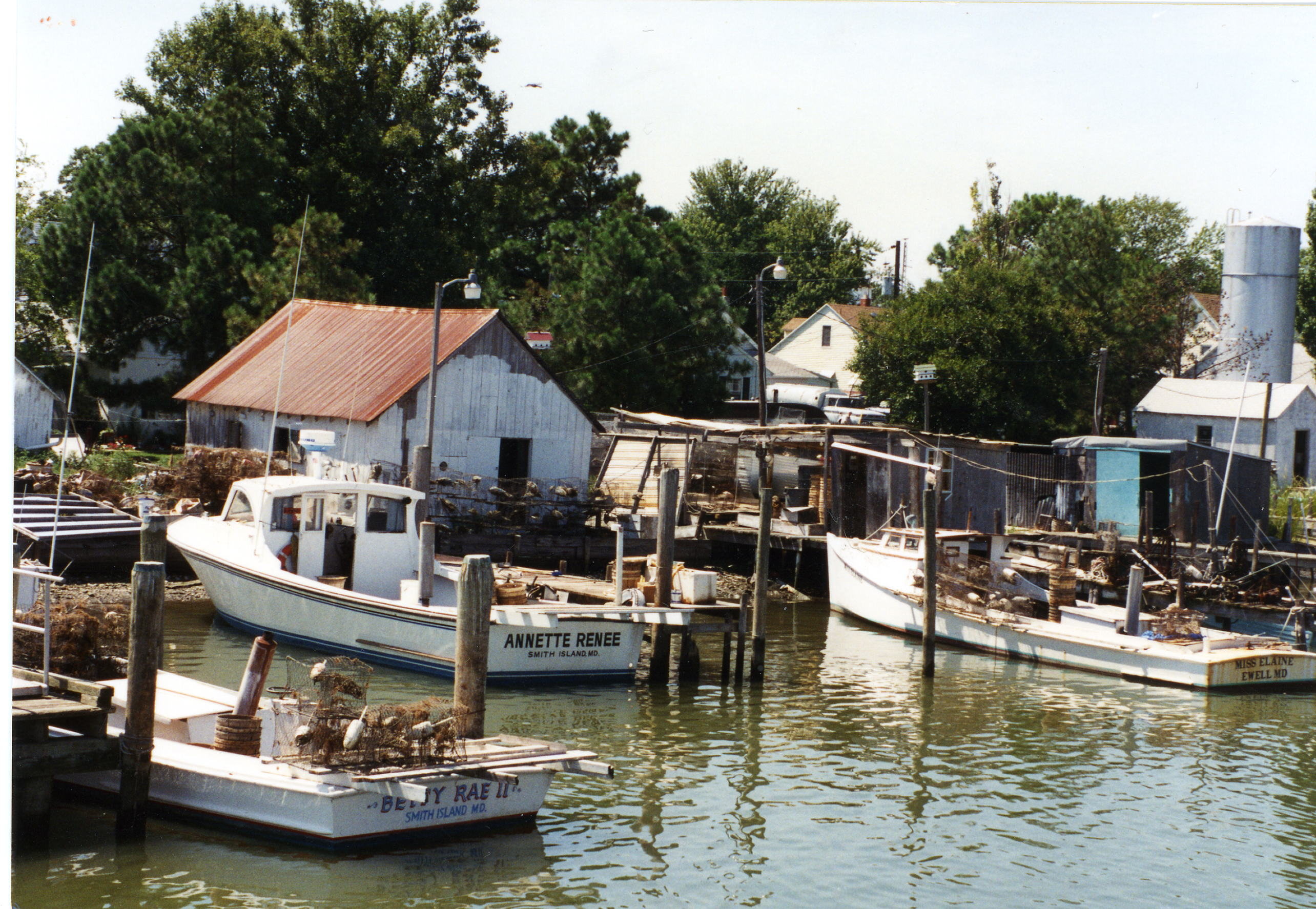 Crabbing Boats on Smith Island